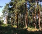 Продажа земельных участков в Кировском (обуховка) - Фото 1