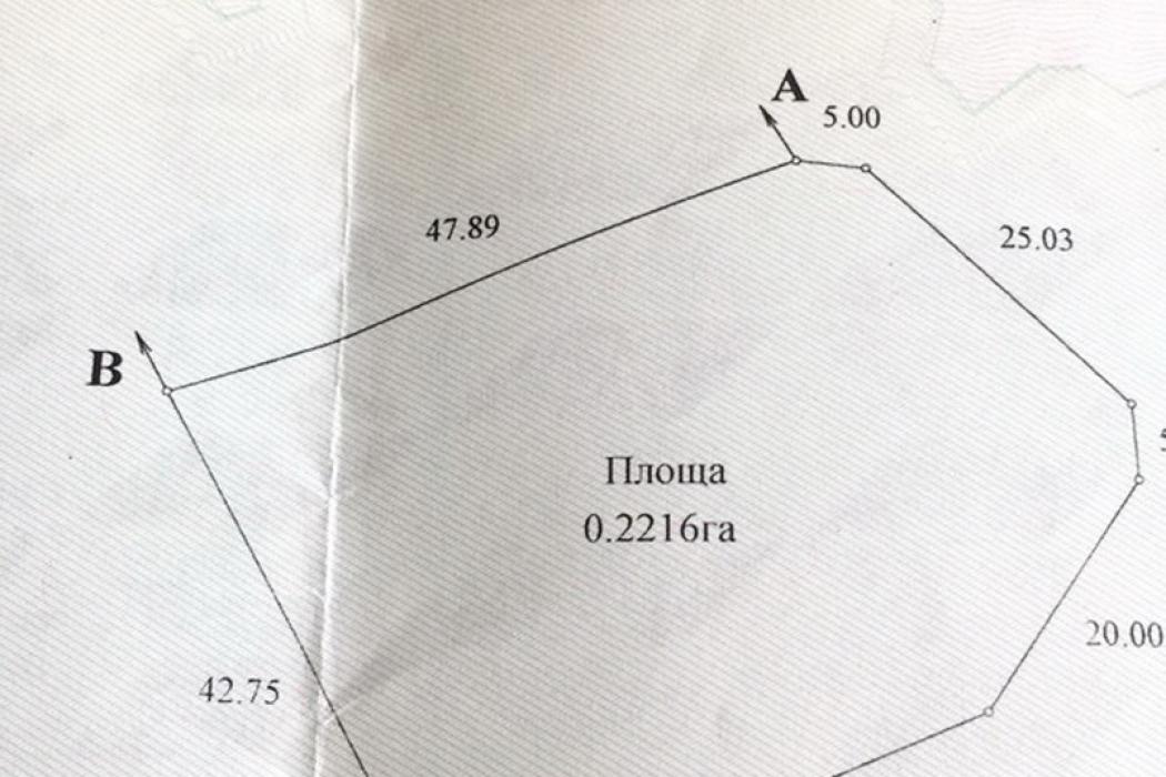 Продается идеальный участок в с.Песчанка 22 сотки в лесу - Фото 1