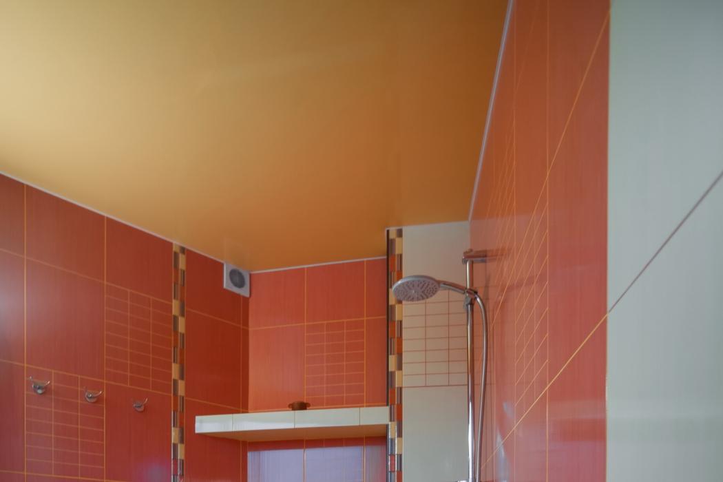Продается элитный 3-этажный дом на берегу р.Самара, г. Новомосковск, ул. Шмидта, 12 - Фото 9